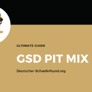 German Shepherd Pix Mix