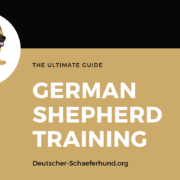 German Shepherd Training Guide